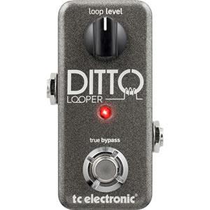 tc electronic ティーシーエレクトロニック / DITTO LOOPER【ルーパー】